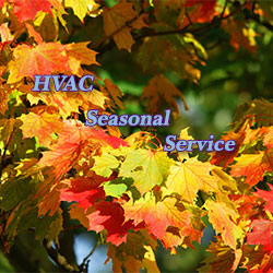 Fall Seasonal Service